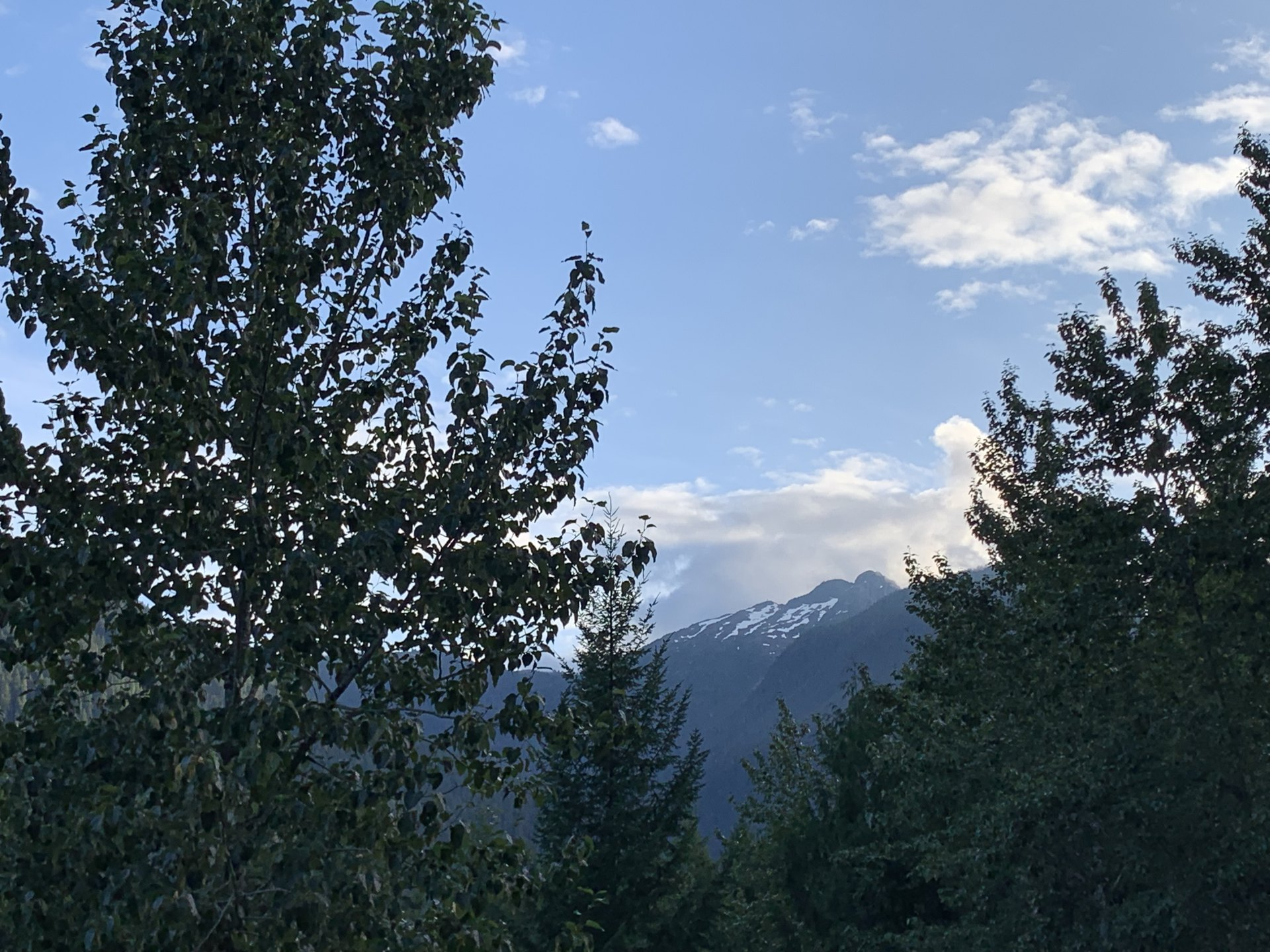 Acts 21 NASB.  A snowcapped mountain peaks through evergreen trees in the foreground.